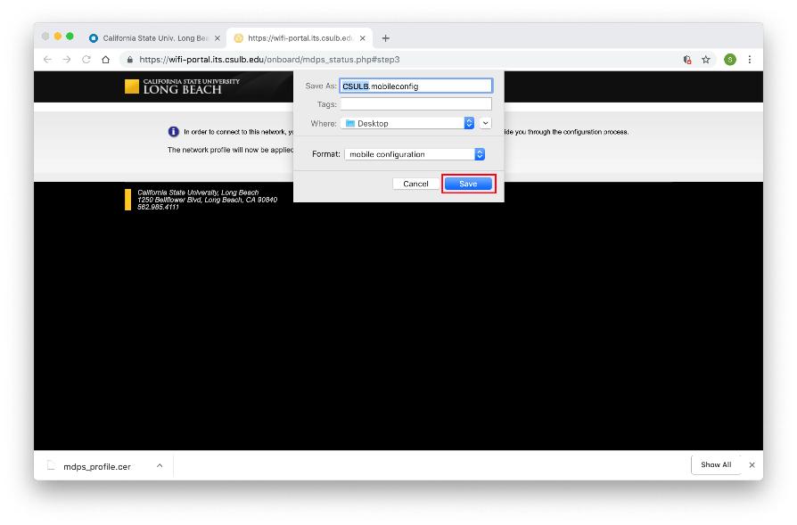 Saving download window