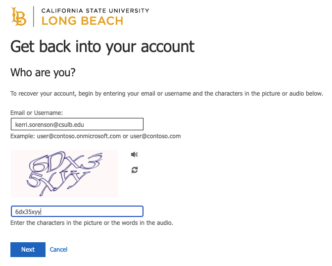 Get back into your account password window