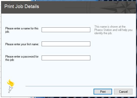 Print job details input window