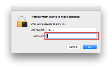 Window asking to type in Mac password