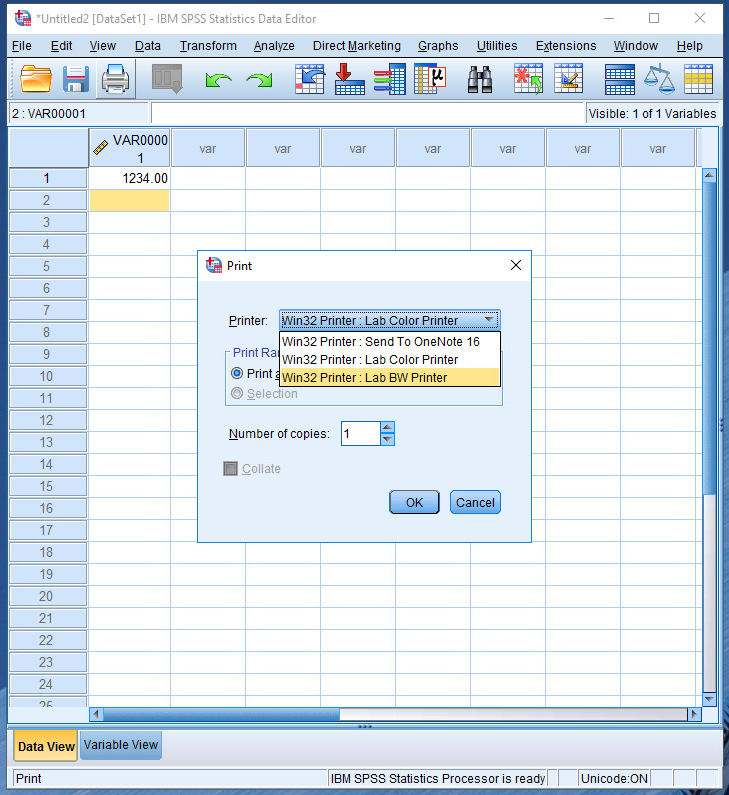 showing the available print queues within SPSS and other available applications