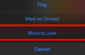 """iOS pop-up menu highlighting the option """"Move to Junk"""""""